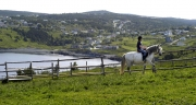 Riding-in-Torbay