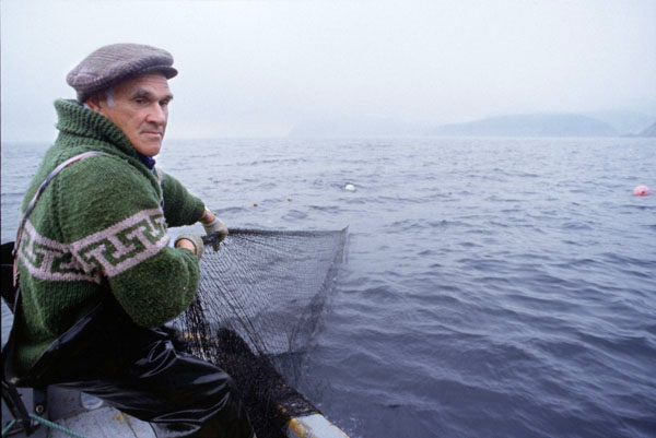 Newfoundland fisherman photo