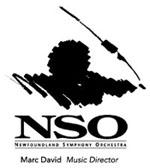 NSO logo B&W - icon