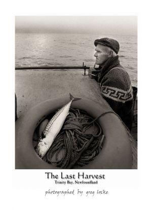 Last-harvest-PROOF.jpg