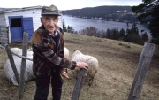 Old man and his sheep in Calvert, Newfoundland.Photo by Greg Locke (C) 2005www.greglocke.comFilm Scan